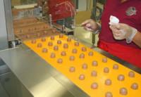 Praca w Niemczech na produkcji od zaraz bez znajomości języka niemieckiego