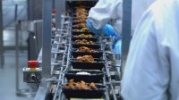Praca w Niemczech na produkcji Lipsk też dla par bez znajomości języka