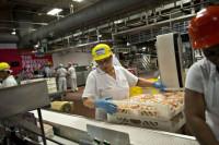 Praca Niemcy dla kobiet od zaraz na produkcji kanapek dla par i grup