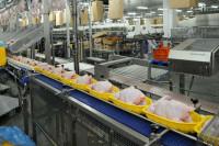 Praca Niemcy pakowanie drobiu na produkcji dla par bez języka Essen