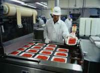 Niemcy praca na linii produkcyjnej w przetwórni mięsnej Frankfurt nad Menem