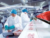 Niemcy praca sezonowa przy pakowaniu mięsa dla par, grup Bawaria