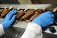 Praca w Niemczech na produkcji lodów od zaraz pakowacz bez języka Hamburg
