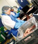 Oferta pracy w Niemczech przy pakowaniu drobiu na linii produkcyjnej