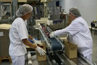 Dam pracę w Niemczech na produkcji przy pakowaniu żywności Norymberga