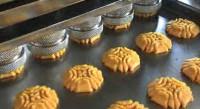 Dam pracę w Niemczech przy pakowaniu ciastek na produkcji Osnabrück