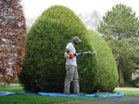 Niemcy praca fizyczna jako ogrodnik przy budowie i pielęgnacji ogrodów