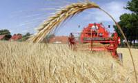 Ogłoszenie aktualnej pracy Niemcy dla par w rolnictwie przy zbiorach plonów