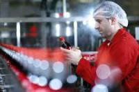 Praca w Niemczech na produkcji napojów bez znajomości języka od zaraz Drezno