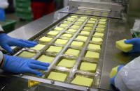 Od zaraz pakowanie sera na produkcji praca Niemcy bez języka Düsseldorf