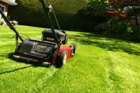 Niemcy praca fizyczna dla ogrodnika przy dbaniu o tereny zielone Ulm