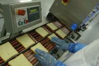 Niemcy praca na linii produkcyjnej kanapek bez znajomości języka Berlin