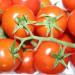 warzywa-szklarniowe-zbiory