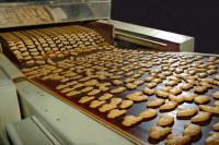 Od zaraz praca Niemcy na linii produkcyjnej ciastek bez języka w Berlinie