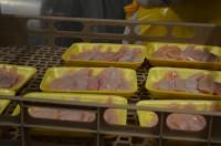 Praca w Niemczech dla kobiet bez znajomości języka na produkcji mięsnej