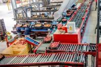 Niemcy praca bez języka przy pakowaniu owoców i jarzyn w przetwórni Kolonia