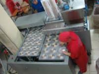 Pakowacz ciastek praca Niemcy na produkcji bez znajomości języka od zaraz