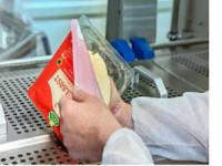 Praca Niemcy dla par przy pakowaniu sera bez znajomości języka Berlin