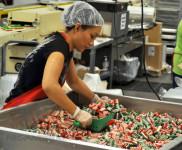 Pakowanie słodyczy na taśmie praca w Niemczech od zaraz bez języka Kolonia