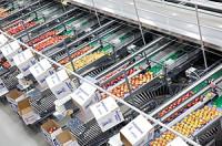 Oferta pracy w Niemczech na produkcji przy sortowaniu ogórków Dingolfing