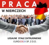 Komisjoner mroźnia praca Niemcy na magazynie z podstawową znajomością języka