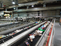 Fizyczna praca Niemcy sortowanie surowców przy taśmie bez języka Düsseldorf