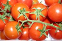 Oferta sezonowej pracy w Niemczech przy zbiorach warzyw bez języka Dortmund