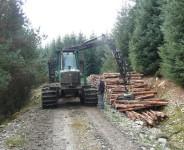 Dam sezonową pracę w Niemczech w leśnictwie pilarz bez znajomości języka