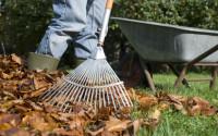 Od zaraz dam sezonową pracę w Niemczech pomocnik ogrodnika Ilshofen