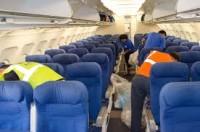 Dam pracę w Niemczech na lotnisku Frankfurt nad Menem sprzątanie samolotów