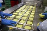Oferta pracy w Niemczech na produkcji w fabryce serów Ulm od zaraz obsługa maszyn