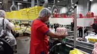 Pakowanie słodyczy w fabryce dam pracę w Niemczech bez języka na linii produkcyjnej
