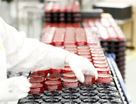 Oferta pracy w Niemczech na produkcji kosmetyków dla kobiet Peissenberg