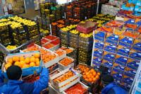 Bez znajomości języka pakowanie owoców ogłoszenie pracy w Niemczech – Kolonia