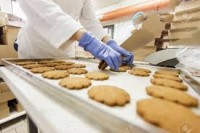 Ogłoszenie pracy w Niemczech pakowanie ciastek bez języka Hamburg od zaraz