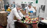 Praca w Niemczech bez języka przy pakowaniu żywności na linii produkcyjnej