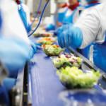 Praca Niemcy na produkcji sałatek warzywnych, owocowych podstawowy język Schwalmtal