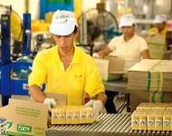 Oferta pracy w Niemczech pomocnik przy produkcji art. spożywczych od zaraz Duisburg