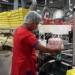 produkcja-pakowanie-slodyczy-cukierkow