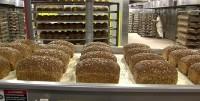 Od zaraz dam pracę w Niemczech pomocnik przy pakowaniu pieczywa w Bönen