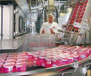 Ogłoszenie pracy w Niemczech od zaraz produkcja jogurtów bez języka Stuttgart