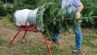 Od zaraz sezonowa praca Niemcy w szkółce leśnej przy choinkach bez języka Neustrelitz