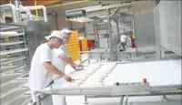 Dam pracę w Niemczech od zaraz bez języka na produkcji w fabryce bagietek z Suhl