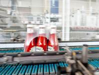 Niemcy praca od zaraz przy pakowaniu keczupów bez znajomości języka Hamburg