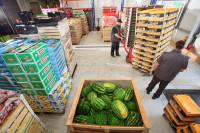 Komisjoner dam pracę w Niemczech na magazynie z owocami, warzywami Stavenhagen