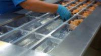 Pracownik produkcji – Niemcy praca bez znajomości języka od zaraz, Haren