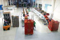 Dla par oferta fizycznej pracy w Niemczech bez języka sortowanie warzyw od zaraz Berlin
