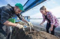 Sezonowa praca Niemcy 2019 Neuwarendorf przy zbiorze szparagów bez języka