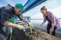 Zbiory szparagów 2019 sezonowa praca w Niemczech bez języka od marca-kwietnia