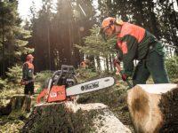 Leśnictwo praca w Niemczech od zaraz jako pilarz w rejonie Würzburga